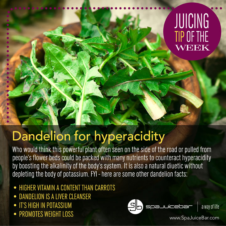 SpaJuiceBar Juice Tip Dandelion