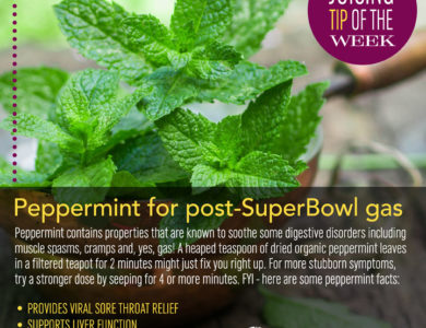 SpaJuiceBar Juice Tip of the Week, Peppermint