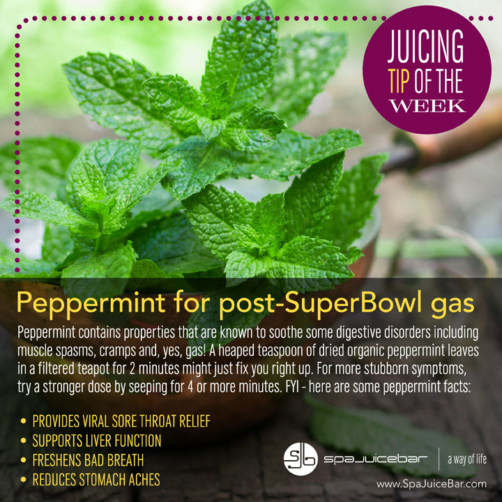 SpaJuiceBar Juice Tip of the Week, Peppermint